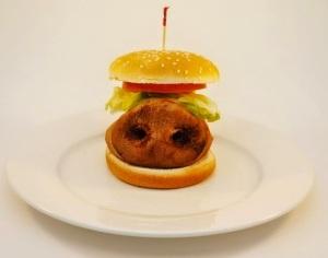 comida industrializada 3
